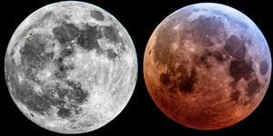David Janglöv fångade månen på bild både 12 timmar före blodmånen samt under händelsen. Foto: David Janglöv