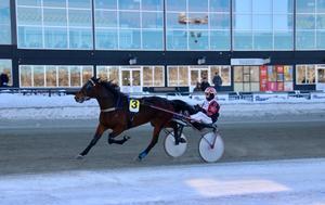 May Lady Lear, tränad av Rickard Smidt och körd av Mats E Djuse tog karriärens första seger vid lunchtävlingarna på Bergsåker. Bild: Mats Persson.