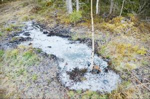 En silverfärgad sörja flöt ut runt borrhålet i skogen utanför Åbbåsen.