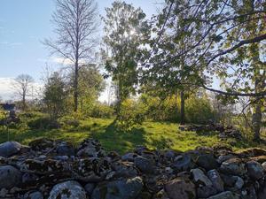 Naturmiljö skyddad som riksintresse i Lanna som försvinner vid exploatering.