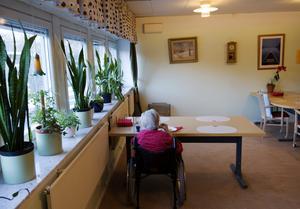Pengar som kommunen fått av staten för att stärka äldrevården, hade sänts tillbaka. Foto: TT