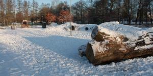 Den snötäckta hundrastgården är nu öppen.