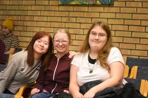 Anna, Matilda och Miranda upplever mobbning i Krylbo.