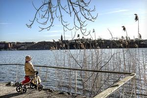 Gästkrönikören Karin Oestreicher längtar till vårens utflykter. Foto: Tomas Oneborg/SvD/ TT.