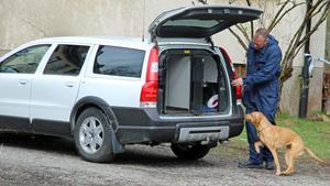 En särskild brandsökhund togs också in som hjälp vid brottsplatsundersökningen.