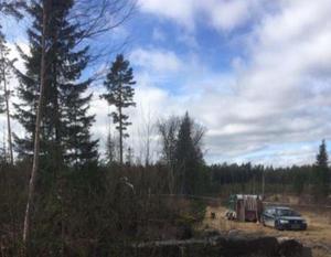 Björn Olsen greps den 4 april i fjol, i ett skogsområde i Gävleborgs län. Bild: Polisens förundersökning