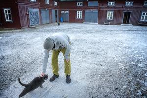 Erik Wanneberg klappar katten Muaw på gårdsplanen.