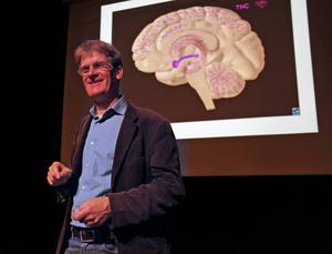 Pelle Olsson poängterade att särskilt den unga hjärnan tar skada av cannabis.