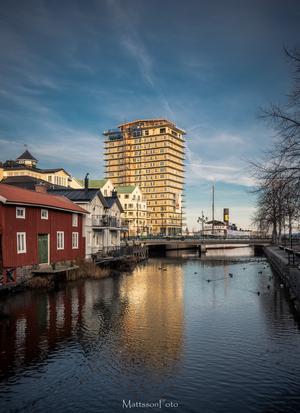 Vårkänslor i Norrtälje stad. Foto: Lars Mattsson