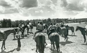 Det är sommaren 1978 och hästarna ska ridas hem till stallet efter sommarbetet.