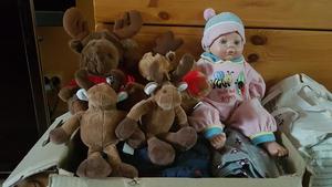 Leksaker och gosedjur tas emot med öppna armar.Foto: Privat