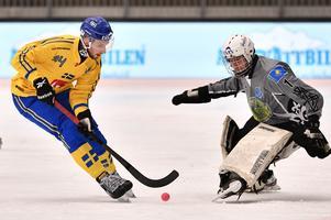 Bild: Björn Larsson Rosvall / TT