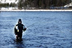 Laxpremiären lockar alltid många fiskesugna.