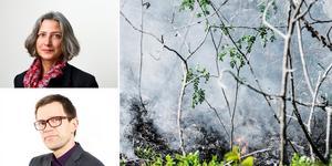 """""""Sammanställningen av hur klimatet synts i media 2018 är ett budskap till våra ledande politiker oavsett partifärg"""" skriver Maria Schultz, verksamhetschef Vi-skogen och Mattias Goldmann, vd tankesmedjan Fores. Foto: pressbild/TT/montage"""