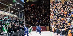 Annandagens bandyfest är tillbaka! Foto: TT/Peter Hoffström/Sofia Lindh