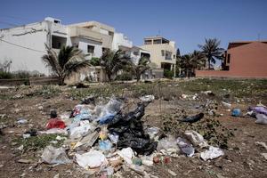 Nedskräpning är bara ett exempel på hur människan påverkar jordens ekosystem.