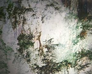Videogram av Lisskulla Moltke-Hoff.