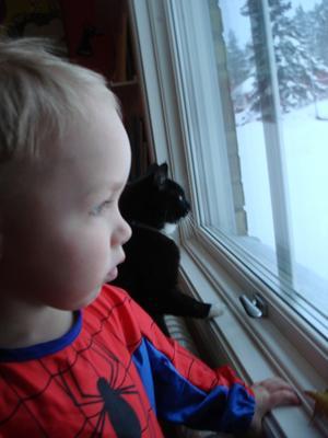 Spindelmannen och hans katt tittar ut på snöovädret.