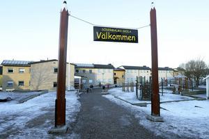I många år har man letat orsaken till problemen med inomhusmiljön på Södermalms skola.