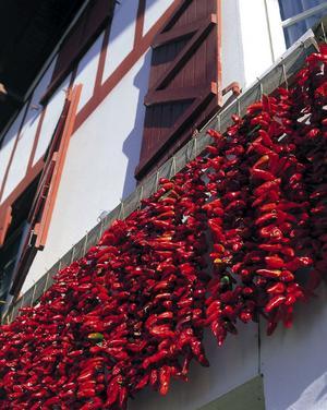 Byn Espelette är känd för sina röda chilifrukter.