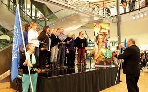 Manifestationen avslutades med sång av Borganäskören.