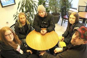 Johanna-Louise Hansson, Isabelle Olsson, Victor Sjöström, Linnéa Olofsson och Benjamin Lyngmo ställde frågor om fordonsprogrammets framtid under måndagens kommunfullmäktige.