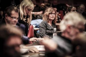 Anna Hildebrand, Miljöpartiet, levererade obekväma sanningar som gjorde onsdagens landstingsfullmäktige till det mest spänstiga på mången god dag.