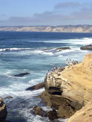 Det brusande Stilla Havet har skapat en kust med både stränder och klippor.   Foto: Emeli Emanuelson