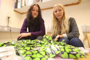 Camilla Eriksson och Ida Råbom är båda med i projektet Heta linjen på Bergsjö centralskola.