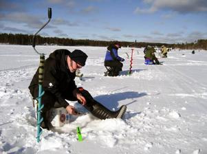 Svegsfiskaren Mats-Arne Axelsson tog SM-brons i herrseniorklassen och kvalade in till nästa års VM i mormyskafiske som avgörs i USA. SM avgjordes i Norsjö. Foto: norsjö sportfiskeklubb