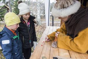 Alexander och Julia Ängeflo från Östersund har precis hittat en skatt och byter mot guldmynt i vikingalägrets handelsbod.