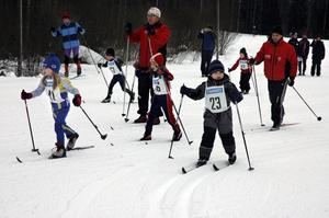 Många knattar. En del av de allra yngsta deltagarna fick hjälp av föräldrarna för att ta sig runt den några hundra meter långa banan.