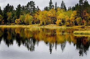 Hösten har nått länets västliga delar.