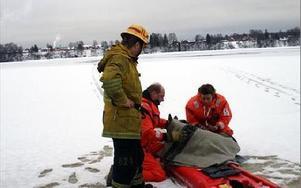 Ingen vet hur länge rådjuret varit i det kalla vattnet men troligtvis en timme, kanske längre. FOTO: ANGELICA LINDVALL