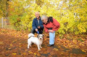 Kompisar. Karl-Erik och Anne Garlöv passar gärna Spotty när deras goda vänner behöver hundvakt.