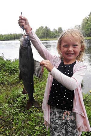 Nikki Åström på 2016 års vinnarbild i fiskebildstävlingen.