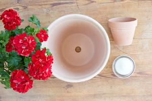 Skapa en blomstrande ljusdekoration.