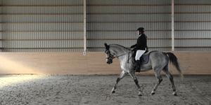 Erica Hallén från Njurunda Ridsällskap tävlade med hästen Delgado