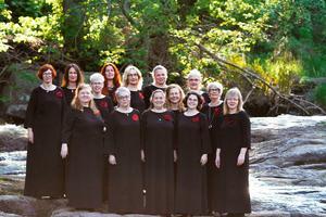 Kören Asarum Vocalis från Blekinge under ledning av dirigenten och organisten Noora Karhuluoma. Pressfoto