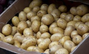 Lokal eller global potatis?