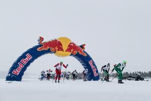 Startögonblicket i Red Bull Nordenskiöldsloppet 2018.  394 skidåkare var anmälda till starten, som gick klockan 06.00 på lördagsmorgonen.  Foto: Magnus Östh/Red Bull Content Pool.
