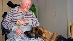 Allan Mattsson är en av dem som tränar varje vecka med terapihunden Glittra.
