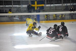 Christian Hedbergs roll i landslaget är försvarare och han spelar med siffran 15 på tröjan. Här i full action mot silvermedaljörerna i papalympics 2010, Japan, i Italien i slutet av oktober. I bakgrunden syns lagkamraten Per Kasperi. Matchen slutade 4-2 till Sverige.