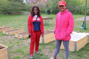 Kompisarna Cindy Tembo och Wassana Chanhom har ännu inte planterat något i sina pallkragar men  planer finns det. Grönsaker och blommor  blir det antagligen för Cindy och Wassana satsar på koriander, zucchini och örter.