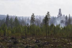 Bränderna i Enskogen och Ängra (på bilden) är fortsatt de största och mest kritiska. Sedan några dagar tillbaka är de dock under kontroll, begränsningslinjerna håller.