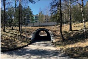 Tunnel för gång- och cykeltrafik under Enhörnaleden behöver kompletteras med fler överfarter på genomfartsleden samtidigt som trafiksäkerheten höjs och hastigheten sänks. Foto: Södertälje kommun