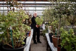 Karl-Olov Bylund, Skallåsen har sedan 2011 ett pelargonhotell på sin handelsträdgård. Dit får kunder som inte har någon möjlighet att ta hand om sina växter lämna in dom för övervintring.
