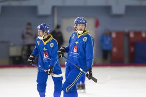 Februari 2016. Englund gör sitt sista VM – och det slutar olyckligt för Sverige som i Uljanovsk åker ur redan i semifinal mot Finland. Bild: Rikard Bäckman / Bandypuls.se / TT