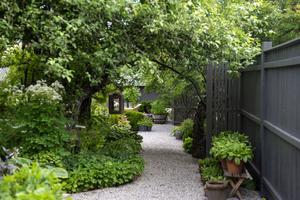 För de som är sugna på att få hjälpa till med trädgårdssysslor kommer det finnas möjlighet till det också.