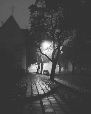 En mörk och regnig morgon i oktober. Foto: Martina Jansson